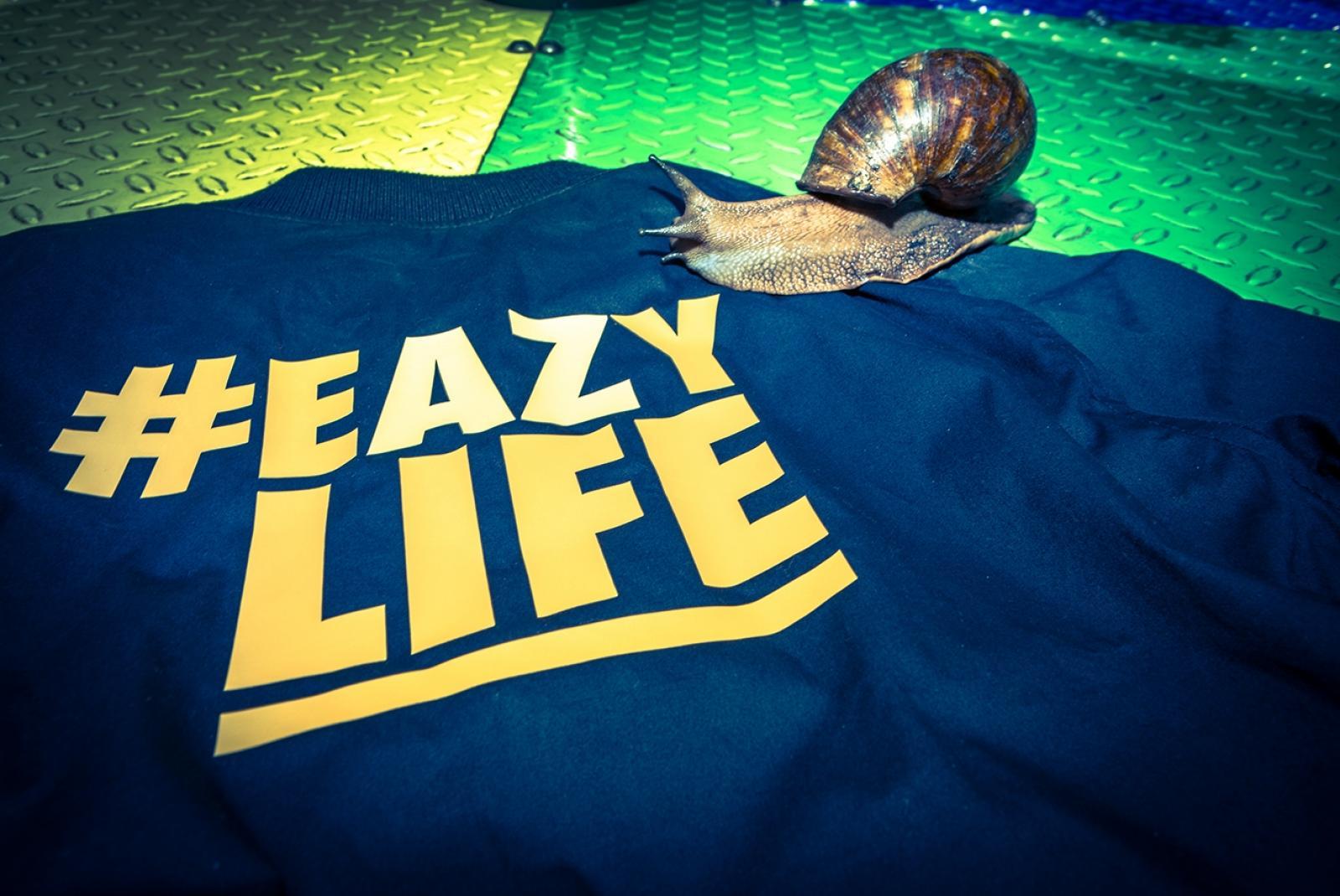 Eazy Life 1