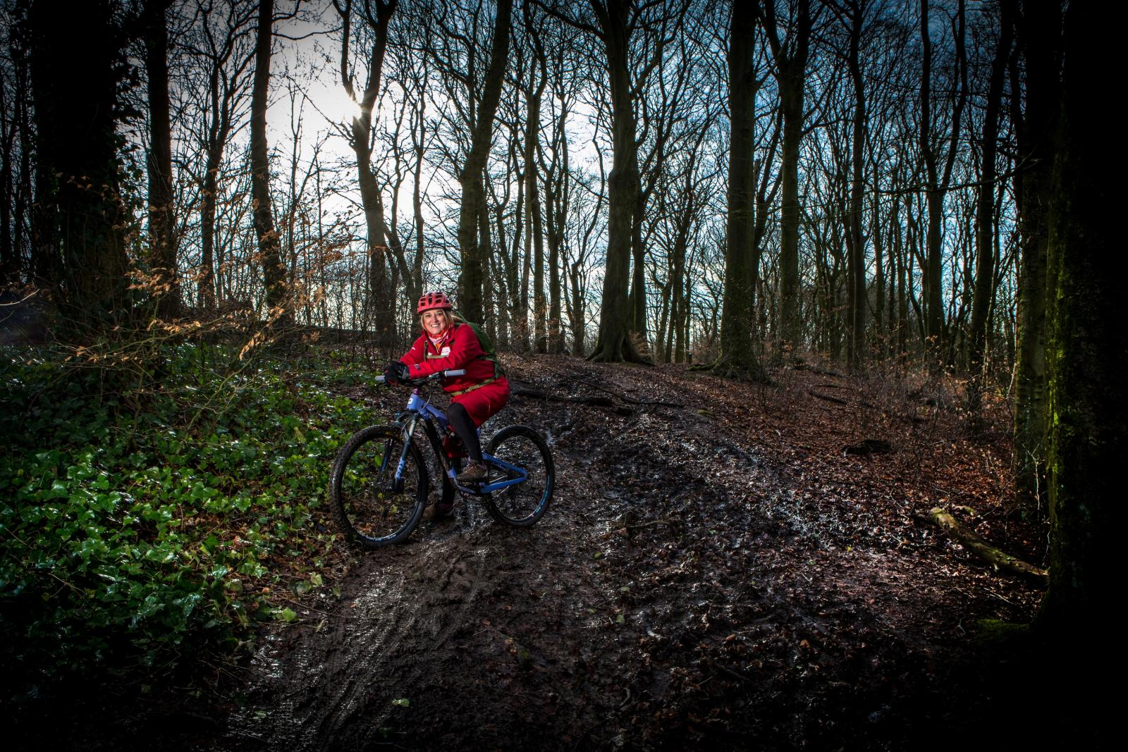 Forest Biking Landscape