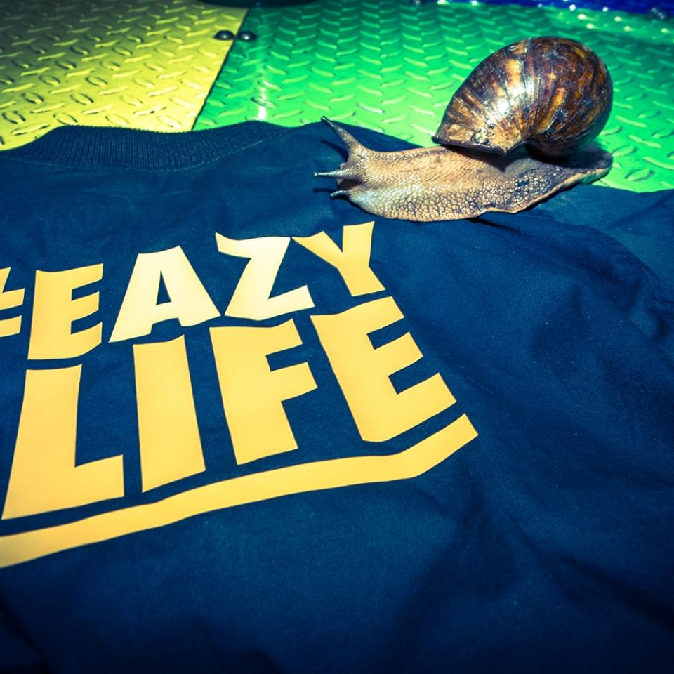 Eazy Life Reportage